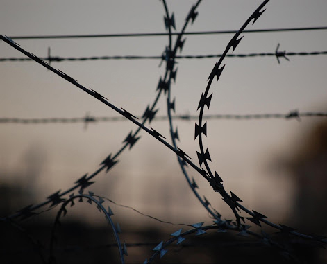 barbed-wire-765484