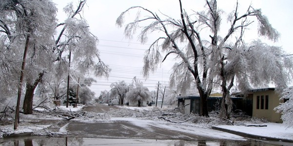 About 900 residents and business were without power as an ice storm pushed through the Panhandle Dec. 19-20. Hardest hit areas were Guymon and Goodwell. Photo provided by Texas County Emergency Management.